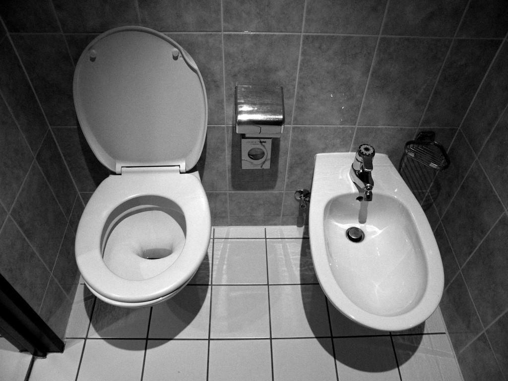 bidet toilet frissebips