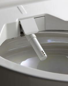 Japanese TOTO Washlet SG nozzle_sproeier