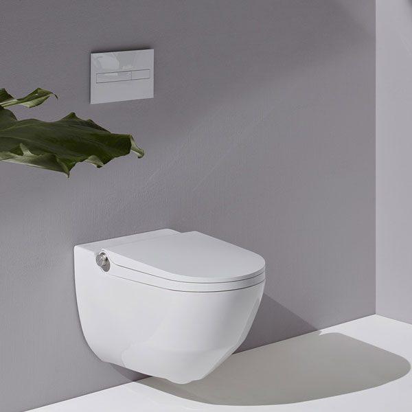 LAUFEN Cleanet Riva toilet