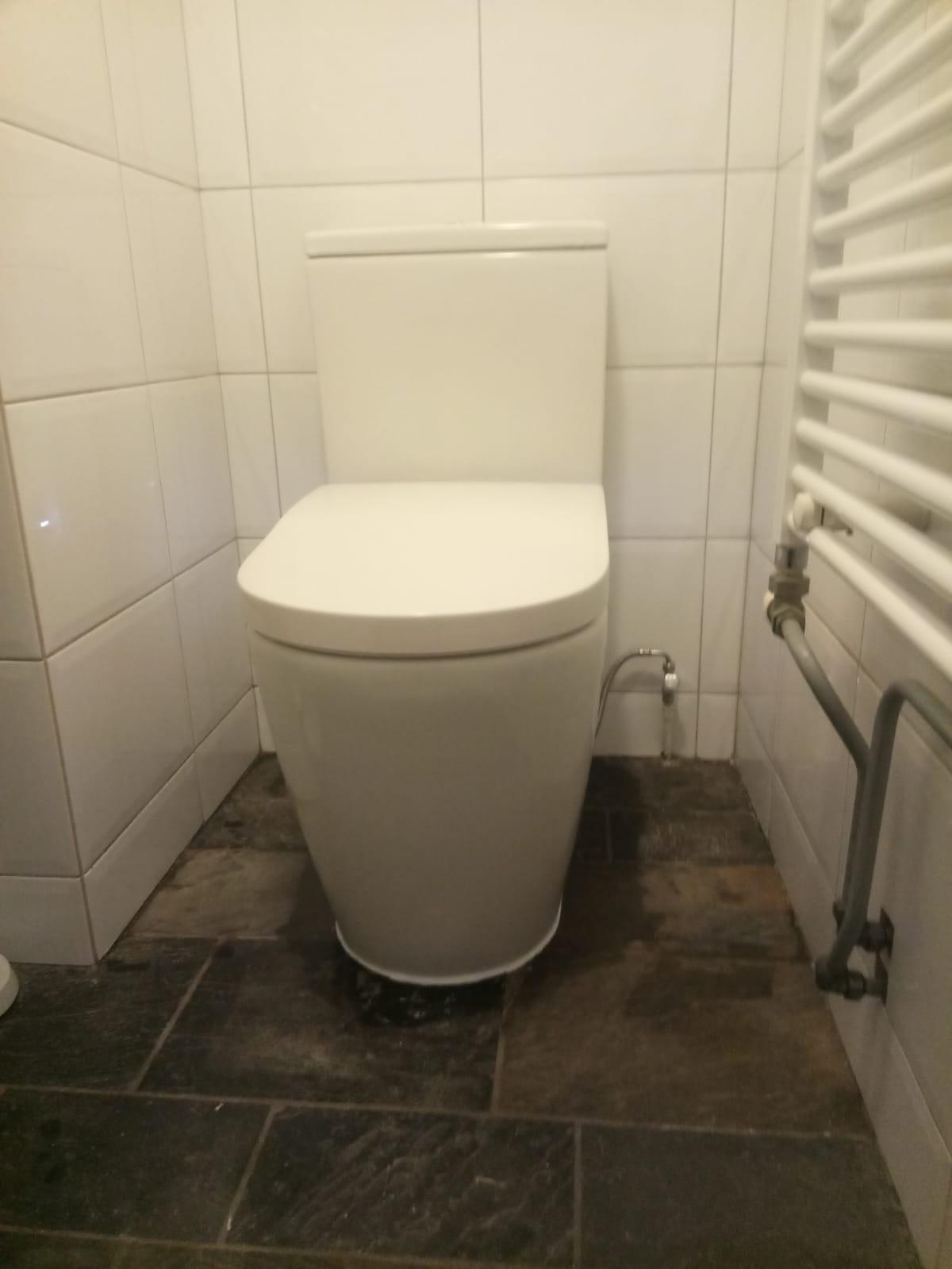 Installatie Roca In Wash staande douche wc Frissebips