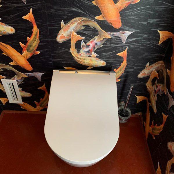 TOTO Washlet RW Japans Toilet installatie (1)